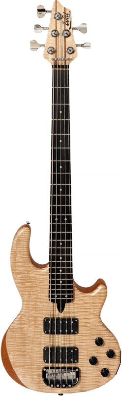 5-string Mk2 with flame maple facings and an ebony fingerboard.